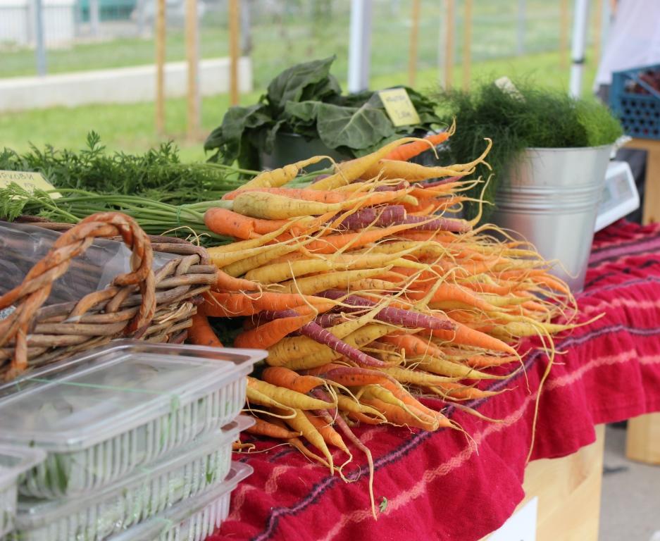 Производители от 8 области идват за есенния фермерски пазар на Lidl
